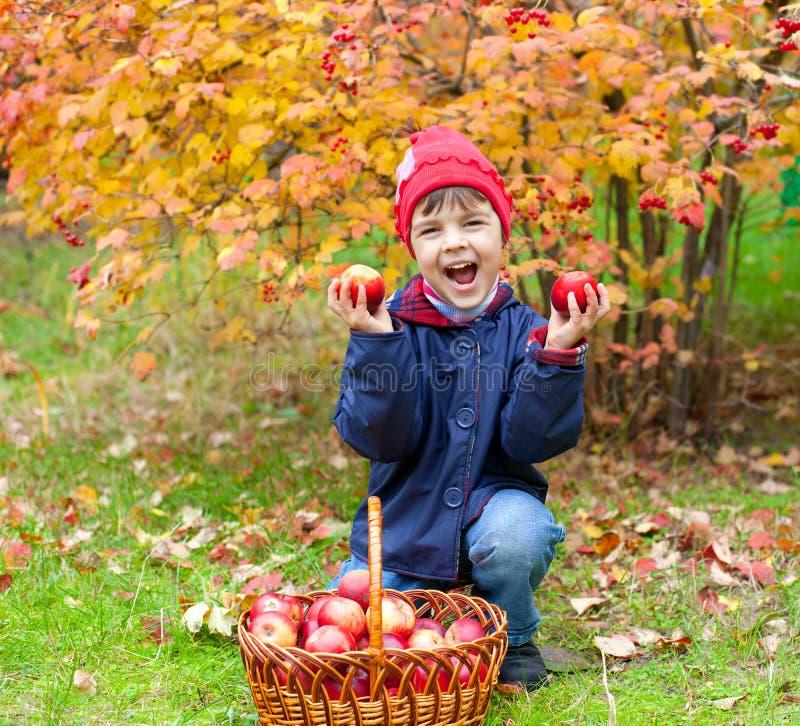 Bambina felice con le mele immagine stock