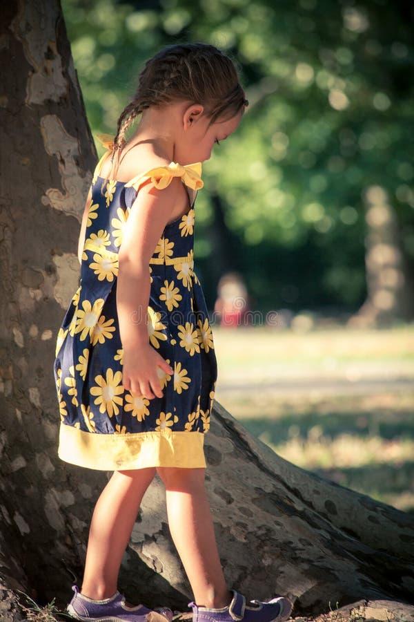 Bambina nella passeggiata sveglia del vestito da estate in parco dall'albero enorme fotografia stock libera da diritti