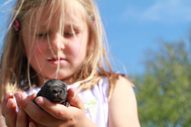 Bambina sorpresa con un coniglio del bambino fotografia stock