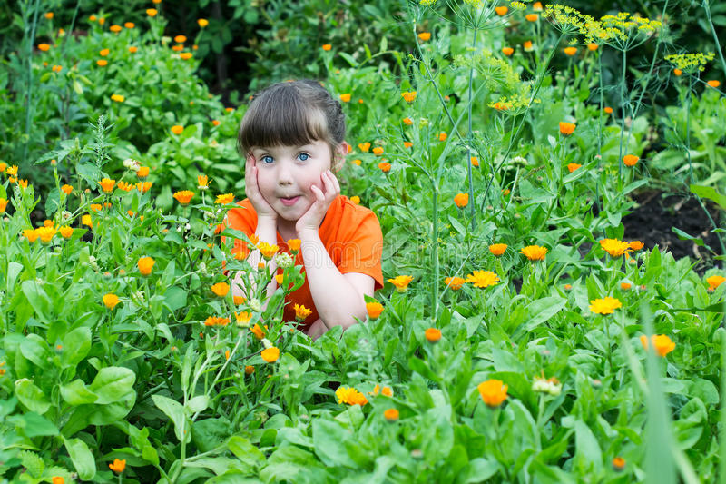 Bambina sorpresa fra i fiori della calendula fotografia stock