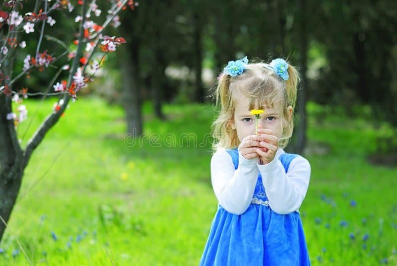 Bambina su erba verde in primavera in un vestito blu fotografia stock libera da diritti