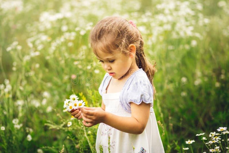 Bambina sul prato con un mazzo delle camomille immagini stock libere da diritti