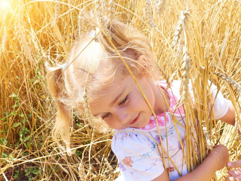 Bambina sveglia che gioca nel grano del campo di estate immagini stock