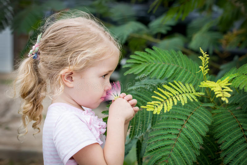 Bambina sveglia che sente l'odore di un fiore fotografia stock