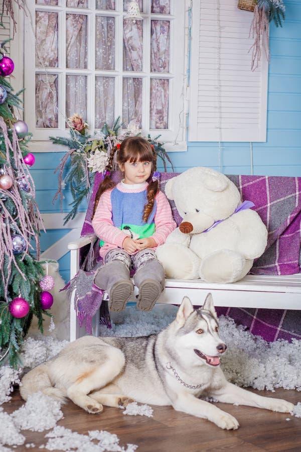 Bambina sveglia con il husky immagine stock