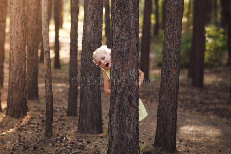 Bambina in vestito giallo che dà una occhiata da dietro gli alberi in Th fotografia stock libera da diritti
