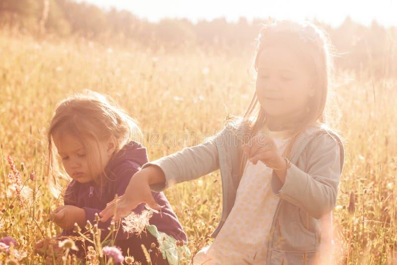 Bambine che giocano sul prato immagini stock libere da diritti