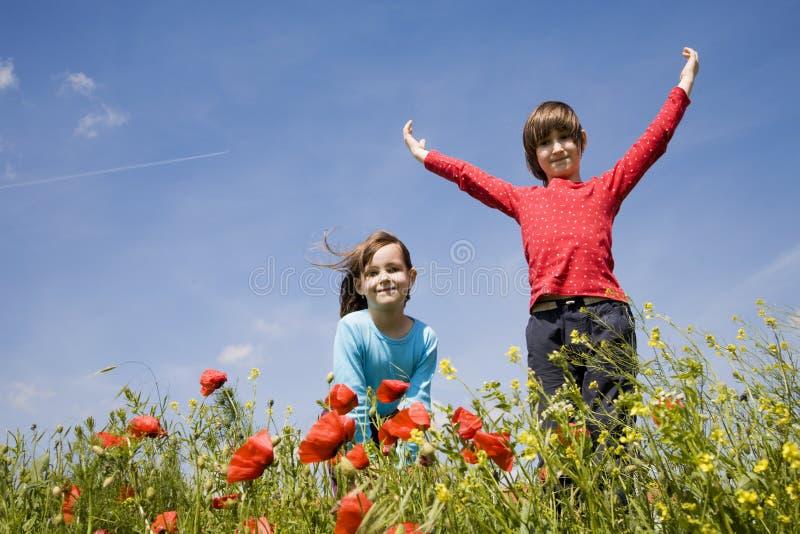 Bambine sul prato di estate immagini stock