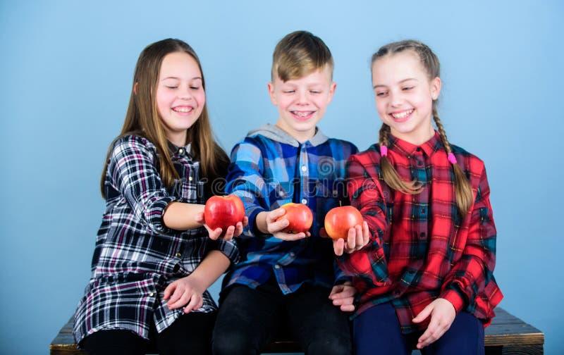 Bambini allegri degli adolescenti del gruppo tenere le mele Il ragazzo e gli amici di ragazze mangiano la mela Anni dell'adolesce fotografia stock libera da diritti