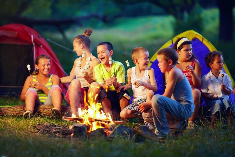 Bambini che arrostiscono le caramelle gommosa e molle su fuoco di accampamento fotografia stock