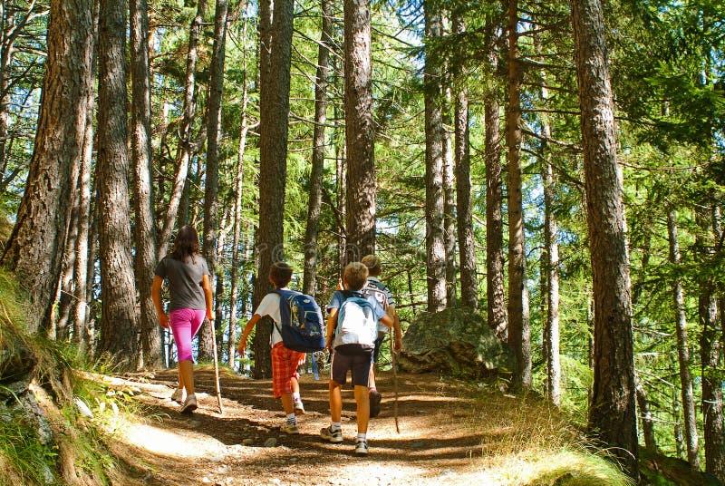 Bambini che camminano in montagna fotografia stock libera da diritti