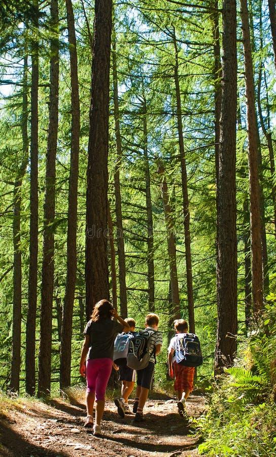 Bambini che camminano in montagna fotografie stock libere da diritti