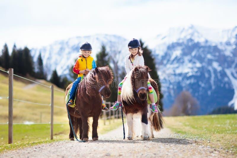 Bambini che guidano cavallino Bambino sul cavallo in montagne delle alpi fotografia stock