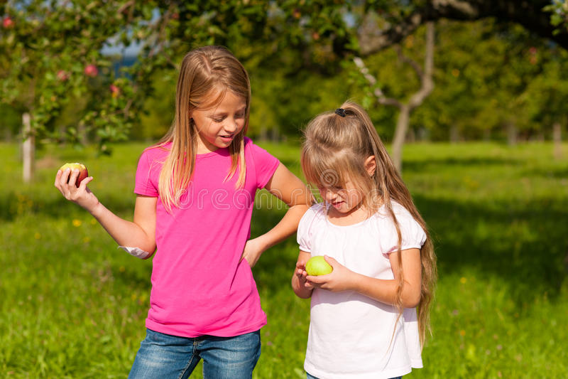Bambini che mangiano le mele immagine stock libera da diritti