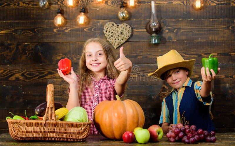 Bambini che presentano a raccolto dell'azienda agricola fondo di legno Mercato dell'azienda agricola Le verdure del ragazzo della fotografia stock libera da diritti