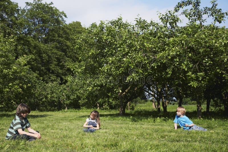 Bambini che si siedono sull'erba vicino al frutteto fotografie stock libere da diritti