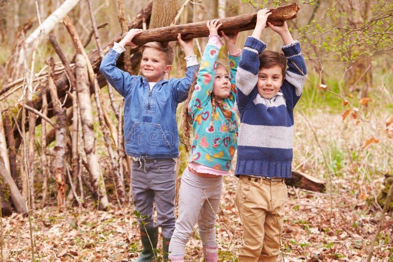 Bambini che sviluppano campo in Forest Together fotografia stock libera da diritti