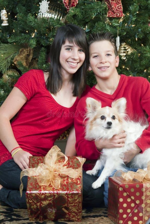 Download Bambini Con Il Cucciolo Di Natale Immagine Stock - Immagine di albero, felice: 7318341