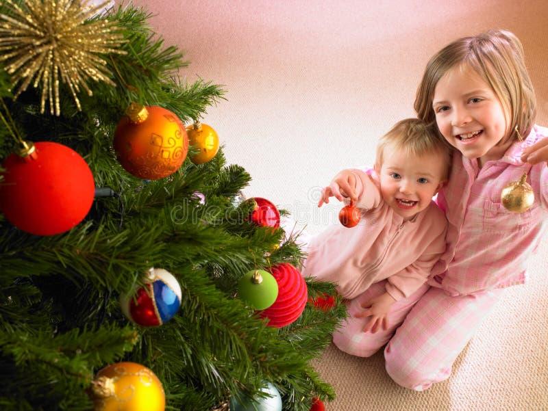 Bambini con l'albero di Natale immagini stock libere da diritti