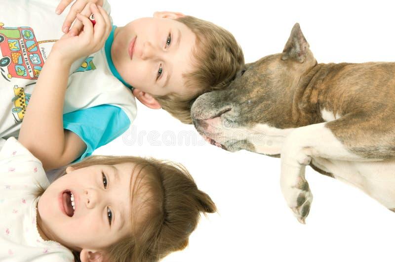 Bambini e cane fotografie stock