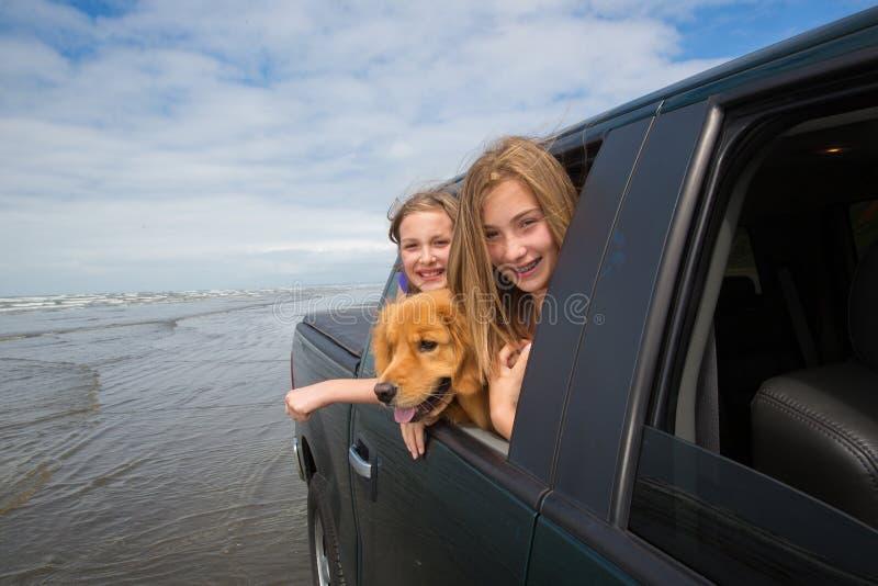 Bambini e un cane nel sedile posteriore immagine stock libera da diritti