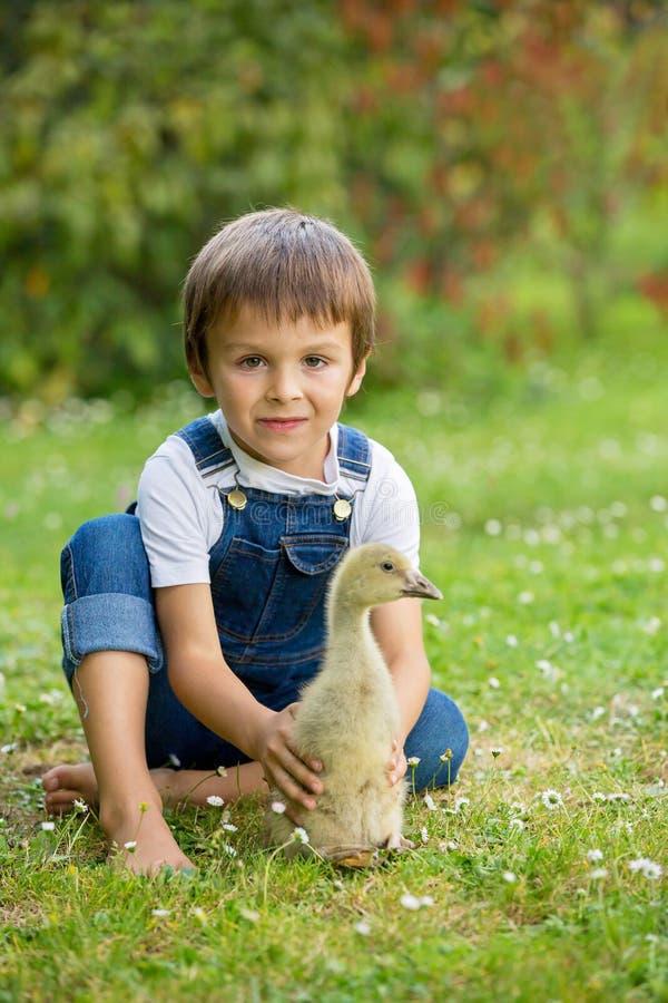 Bambini in età prescolare adorabili, fratelli del ragazzo, giocanti con poca d fotografia stock