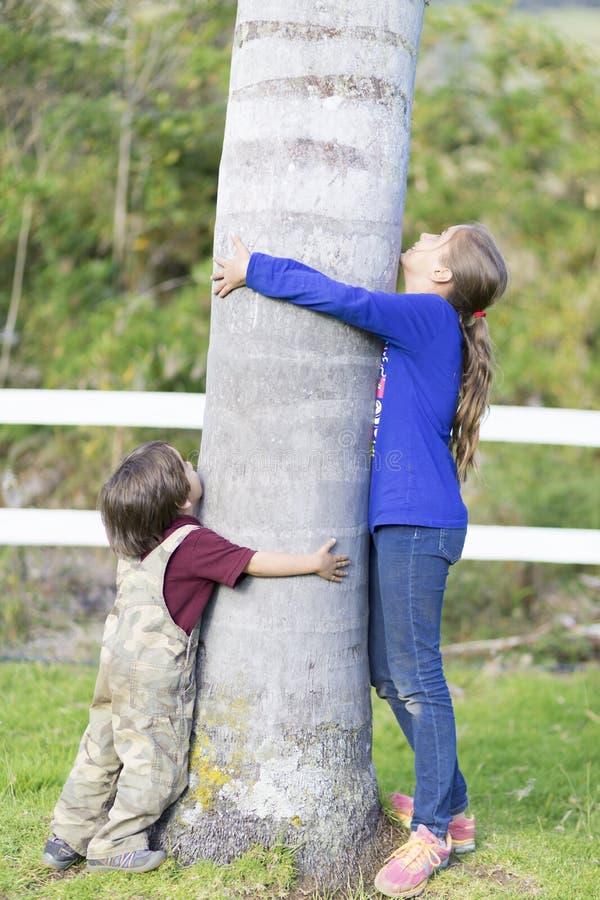 Bambini felici che abbracciano un albero immagini stock