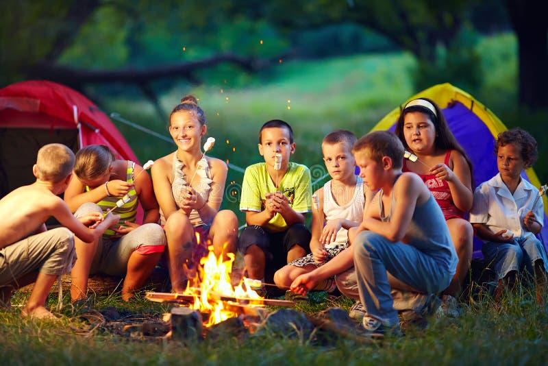 Bambini felici che arrostiscono le caramelle gommosa e molle su fuoco di accampamento immagini stock