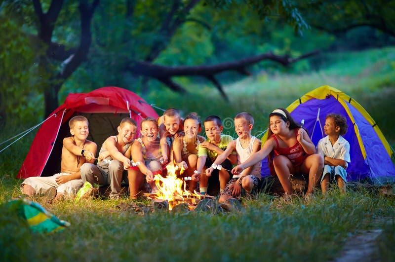Bambini felici che arrostiscono le caramelle gommosa e molle su fuoco di accampamento immagine stock libera da diritti