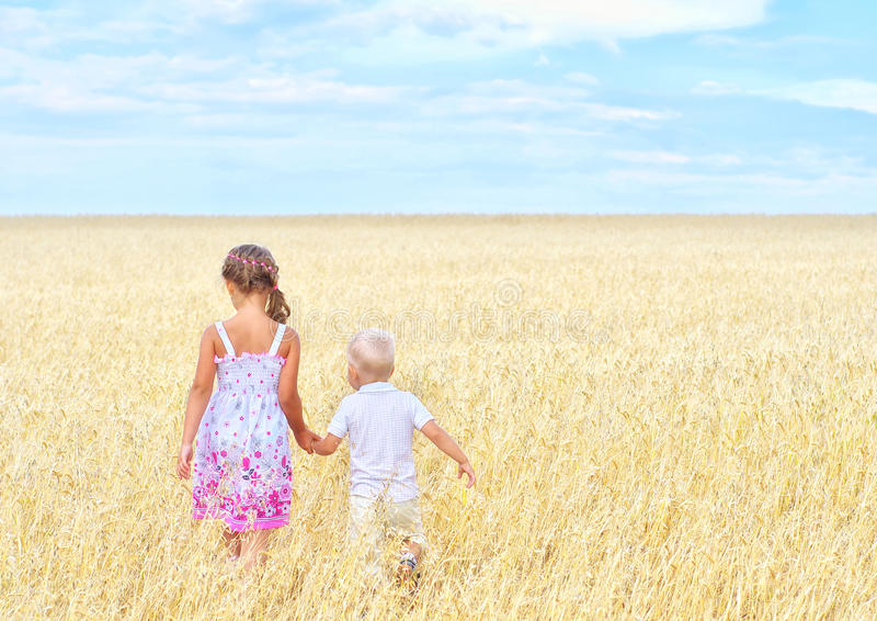 Bambini nel campo di frumento immagine stock libera da diritti