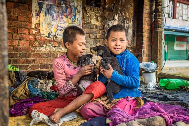 Bambini senza tetto che giocano con i cuccioli a Kathmandu, Nepal immagini stock