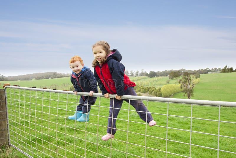Bambini sul cancello dell'azienda agricola fotografia stock