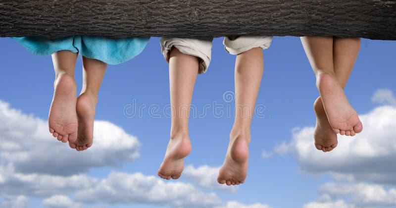 Bambini sull'albero fotografia stock libera da diritti