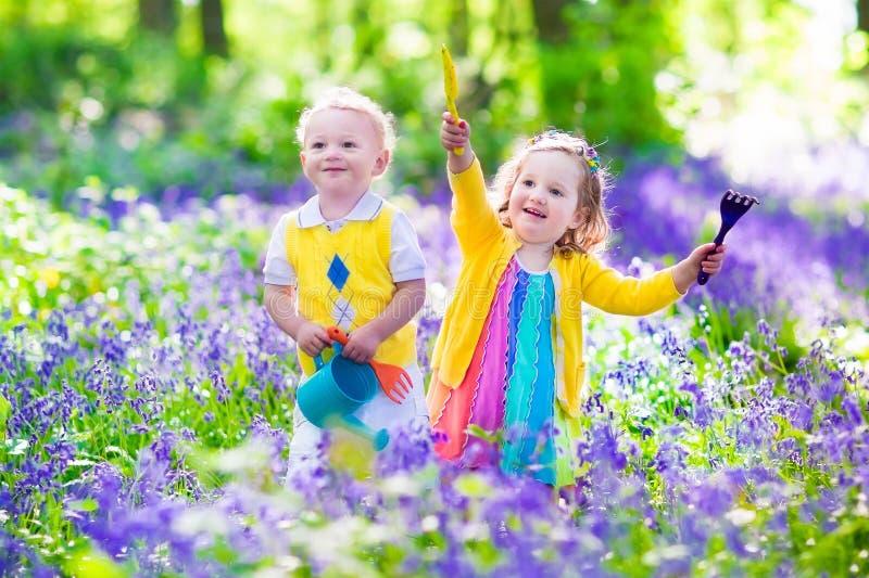 Bambini in un giardino con i fiori di campanula immagine stock libera da diritti