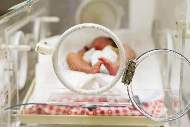 Bambino appena nato che dorme all'interno dell'incubatrice fotografia stock