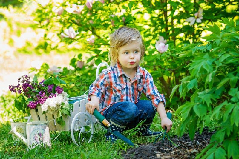 Bambino che aiuta nel giardino fotografia stock libera da diritti