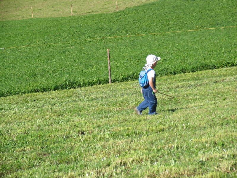 Bambino che cammina sul prato fotografie stock libere da diritti