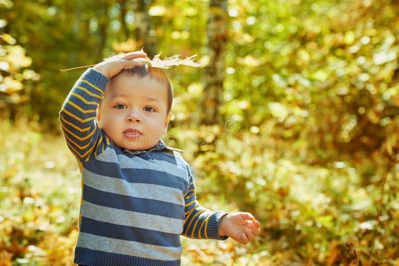 Bambino che cammina in un parco di autunno fotografia stock libera da diritti