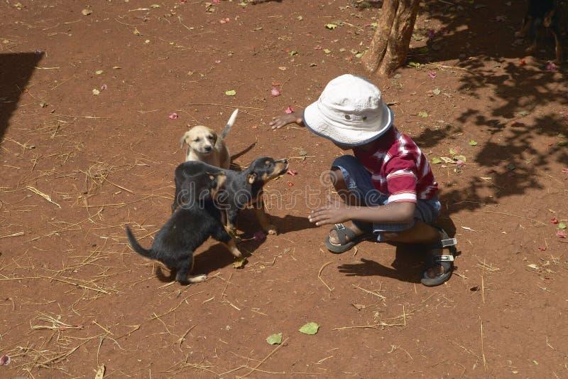 Bambino che gioca con i cani nel riparo animale a Nairobi, Kenya, Africa fotografia stock