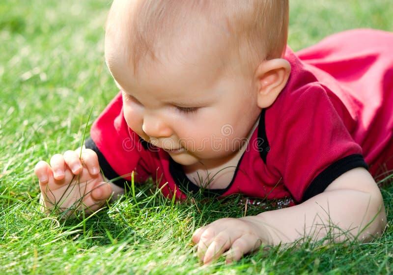 Bambino che gioca sull'erba immagine stock libera da diritti