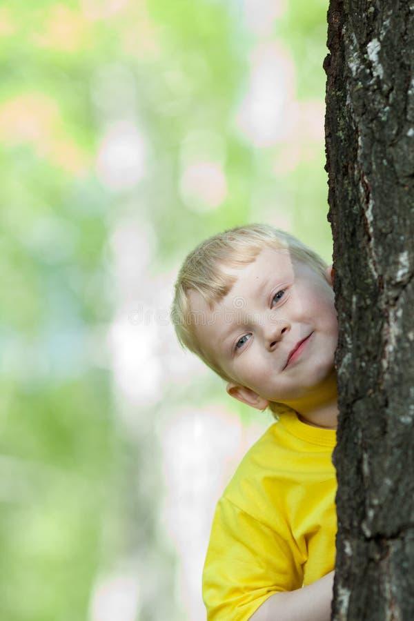 Bambino che osserva da dietro l'albero esterno fotografia stock libera da diritti