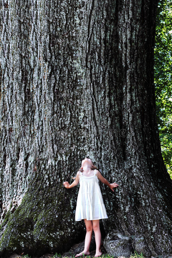 Bambino che si leva in piedi sotto un grande albero fotografia stock libera da diritti