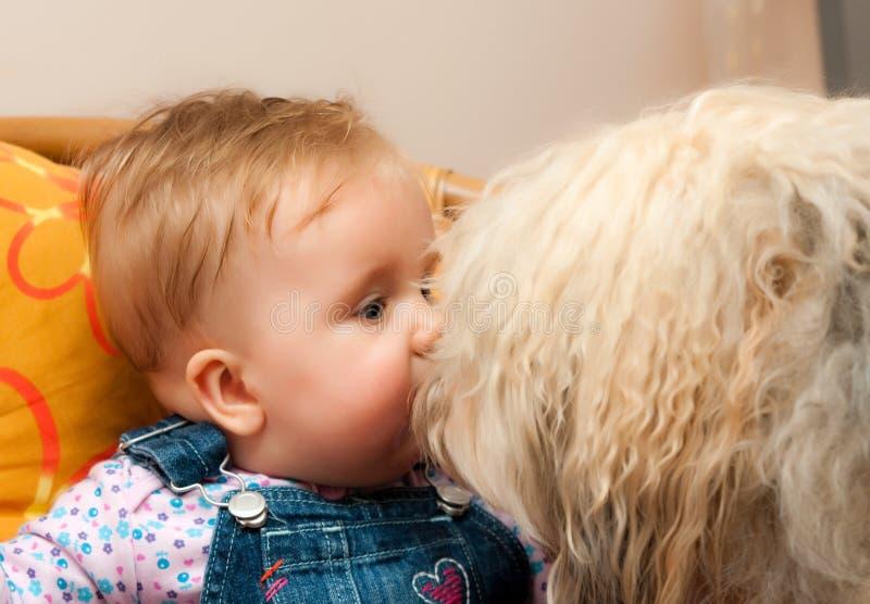 Bambino con il grande cane fotografia stock