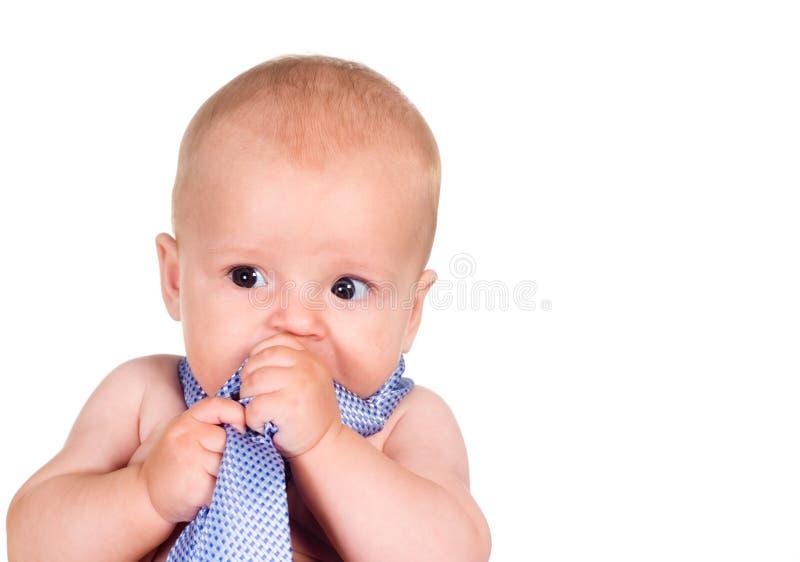 Bambino con il legame fotografia stock libera da diritti