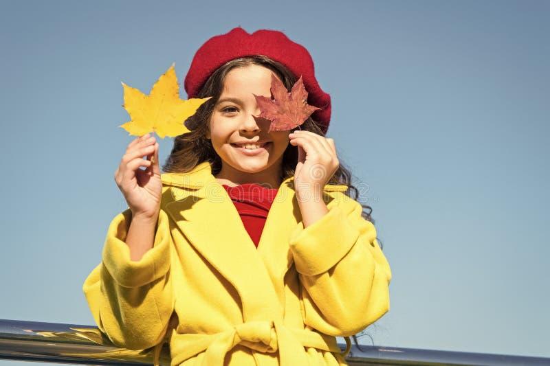 Bambino con la passeggiata delle foglie di acero di autunno La comodit? di autunno ? appena intorno Bambina eccitata circa la sta fotografia stock