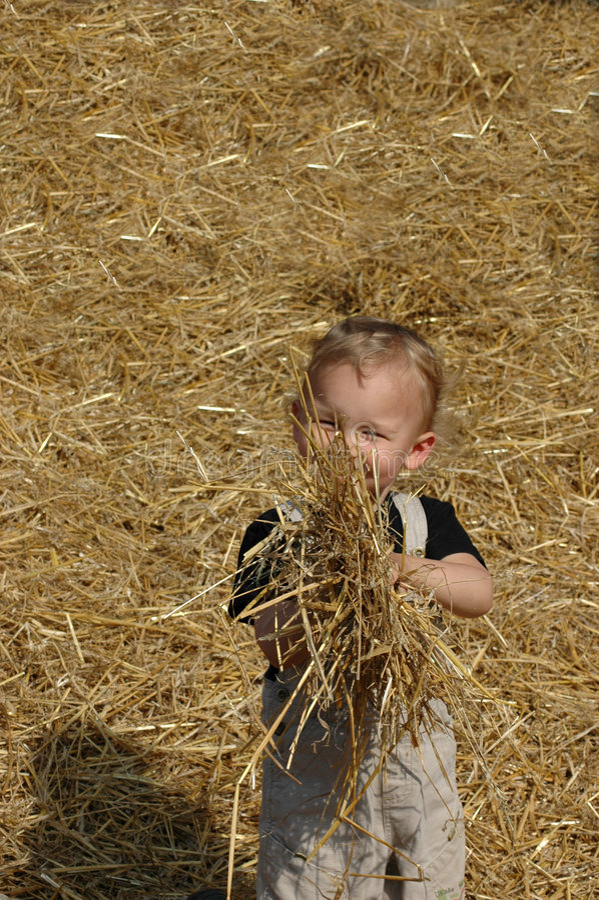 Bambino con una paglia. fotografia stock libera da diritti
