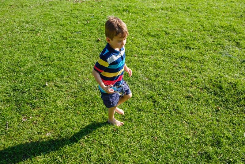 Bambino dai capelli riccio sveglio che gioca nell'erba verde immagine stock