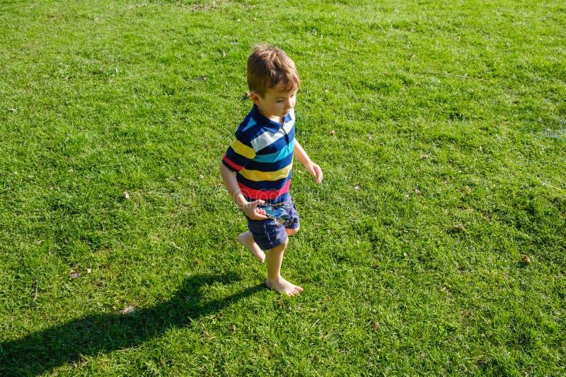 Bambino dai capelli riccio sveglio che gioca nell'erba verde fotografia stock