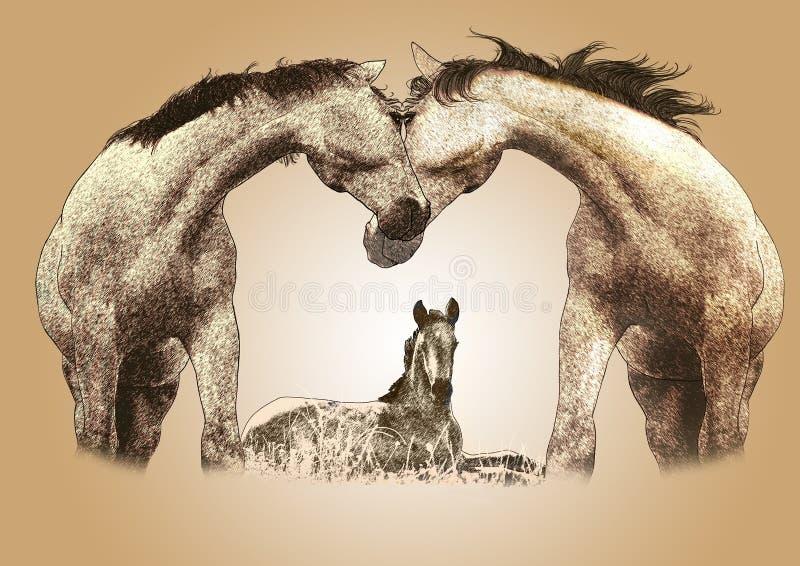 Bambino dei cavalli illustrazione di stock
