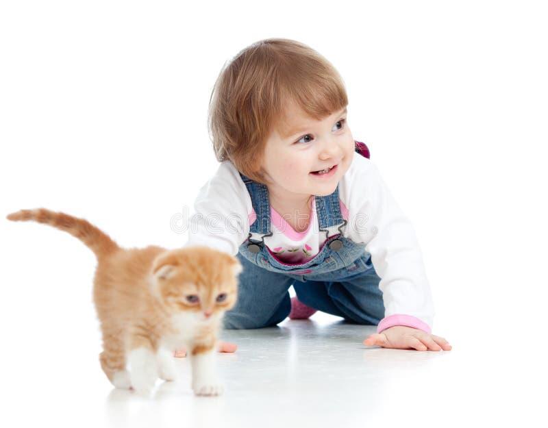 bambino del bambino che gioca con il gattino del gatto fotografia stock libera da diritti